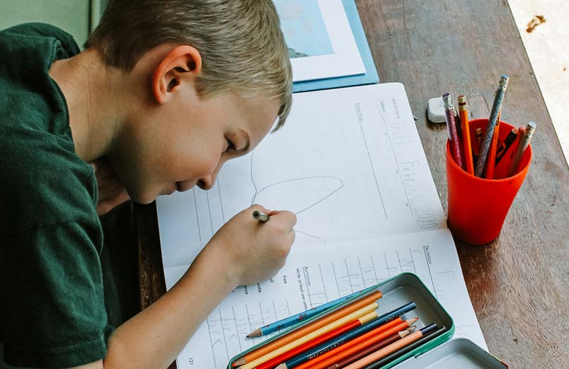 A boy filling out a worksheet for school.