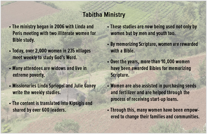 Statistics about the Tabatha Ministry